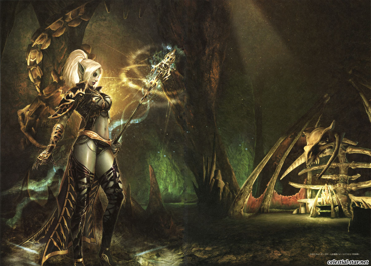 Lineage II The chaotic chronicle fan book image by NCsoft Corporation